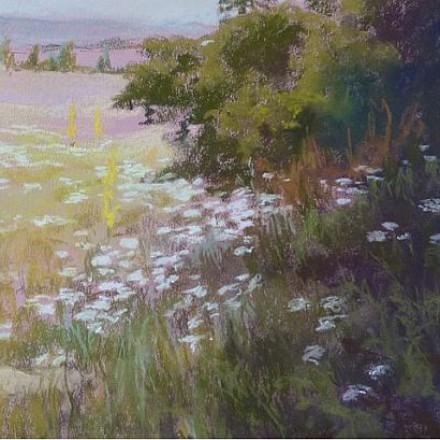 Hazai virágok, kertek, mezők